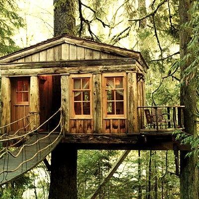 Temple of the Moon Treehouse Lodge, Fall City, Washington