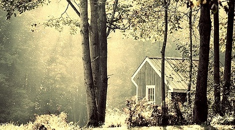 Morning Light, Forest Cottage, New Hampshire
