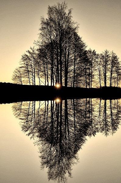 Reflection, Vestfold Fylke, Norway