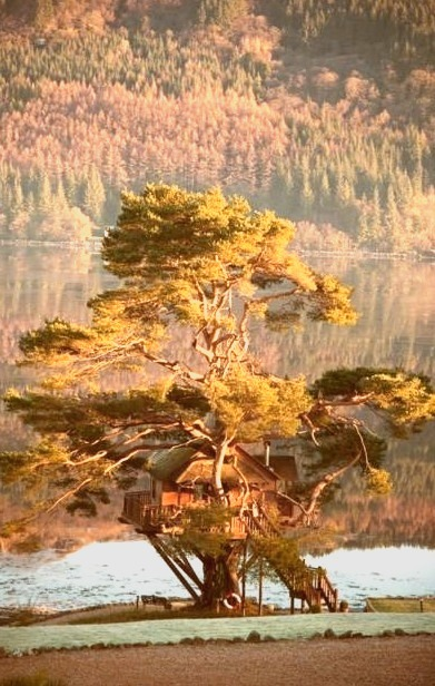 Tree House Lodge, Loch Goil, Scotland