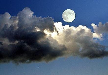 Moon Shadows, Serbia